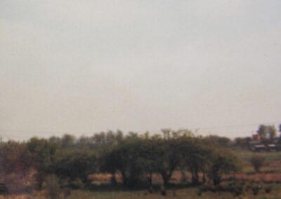 Pylon & smallholding